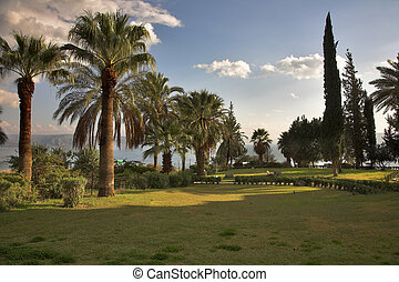 Monastic park. - Charming beautiful park at a monastery on...