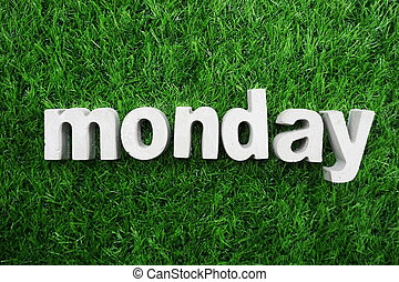 Monday made from concrete alphabet top view on green grass