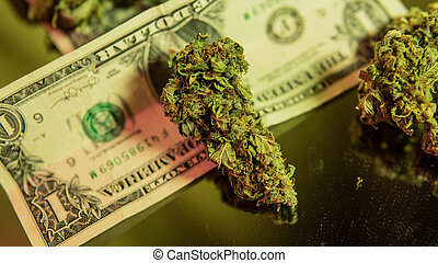 monde médical, cannabis, guérison, strains, liberté, close-up., legalize, marijuana