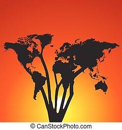 mondiale, arbre, coucher soleil, carte