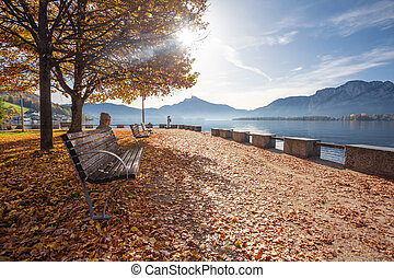 Mondsee Austria, autumn landscape. Promenade by the lake with bench and trees. Colorful nature