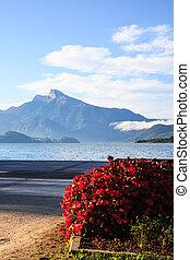 Mondsee lake in the morning