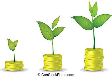 moneda, árbol, crecer