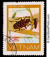 monete, chiazzato, circa, 1981, francobollo, scarabei, -,...