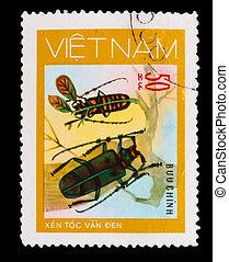 monete, circa, 1981, francobollo, scarabei, -, 50,...