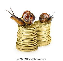 monete, lumaca