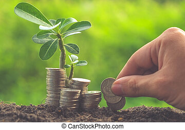 Money and plant with hand with filter effect retro vintage style