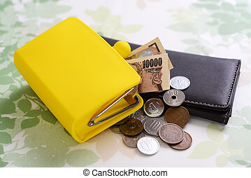 Money and wallets