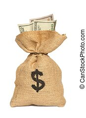 Money Bag - Isolated money bag