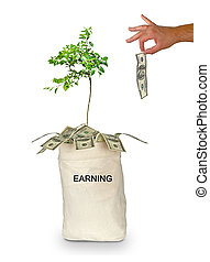 Money bag with earning
