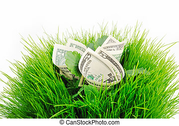 Several banknote folded inside the green grass and leaves