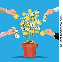Money coin tree. Growing money tree.