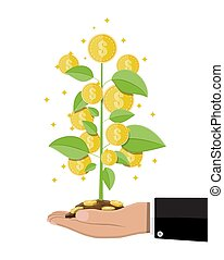 Money coin tree in hand of businessman