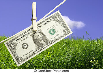 money concept - fresh meadow and one dollar