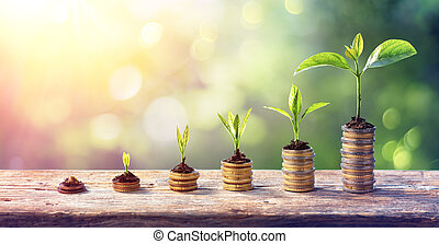 Money Growth Concept - Plants On Coin Stacks In Increase
