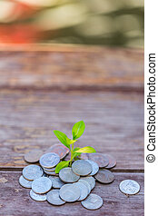 Money growth Deposit your budget for investment