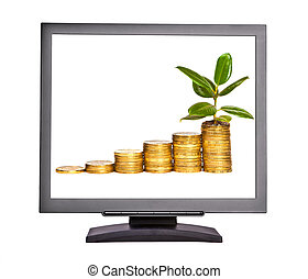 Money growth on the screen