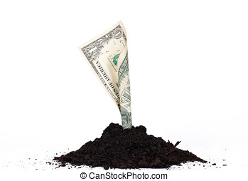 money growth - Money growth from soil over white background....