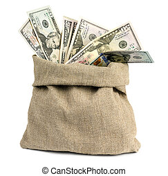 Money in a bag on a white background