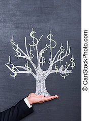 Money in my hand. Close-up of hand holding tree drawn on the blackboard