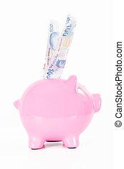Money in Pink Piggy Bank