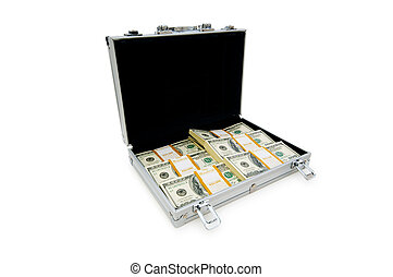 Money in the case isolated on white