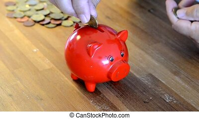 money pig filling with euro