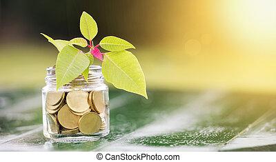 Money savings concept - gold coins banner