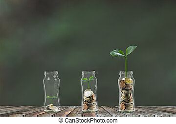 Money step by step growing, A stack of coins growing in 3 glass jar. Saving money, money investment concept.