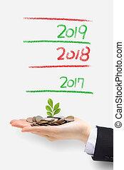 money tree grow up