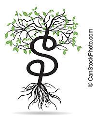 money tree-growing dollars - the growing dollars sign tree