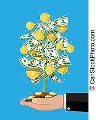 Money tree in hand.