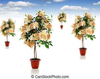 Money trees.