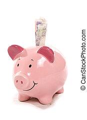 moneybox, soldi, valuta britannica, banca piggy