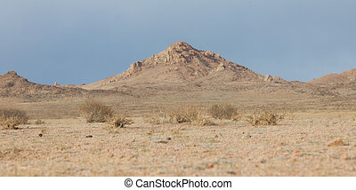 mongolian, 風景, 典型的