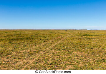 Mongolian steppe, road in the field