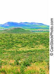 mongoliet, felt, jul, græs, indre