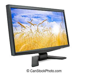 monitor., computer