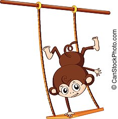 Monkey and swing