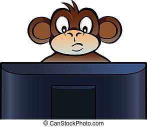 Monkey behind screen - Monkey sitting behind a computer...