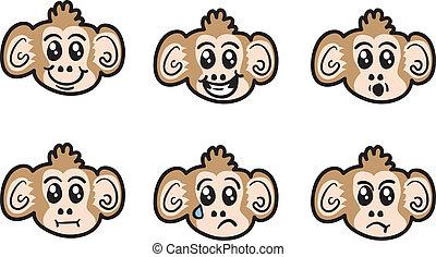 Monkey Faces