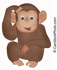 Monkey - Fauna - monkey