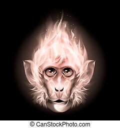 Monkey fire head