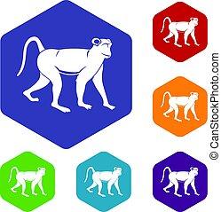 Monkey icons set hexagon