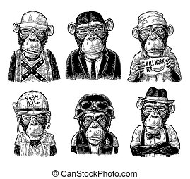Monkey in human clothes. Redneck, businessman, hipster, biker, soldier, beggar.