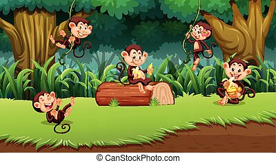Monkey in jungle scene