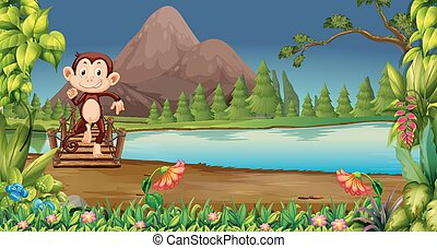 monkey in nature night scene