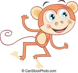 Monkey isolated on white background