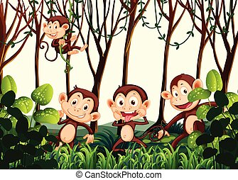 Monkey living in the jungle