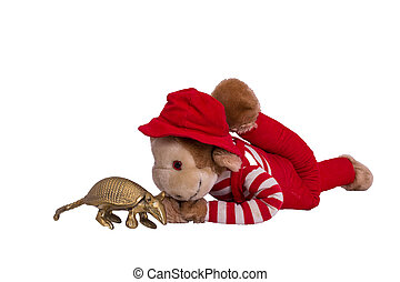 Monkey Lying Down with Armadillo